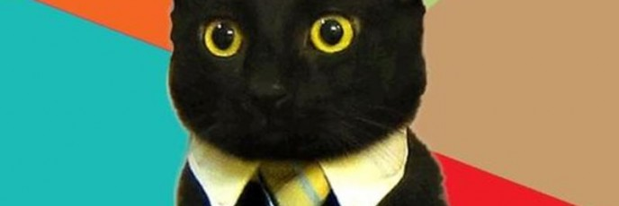 resized_business-cat-meme-generator-hello-sir-i-m-here-for-the-job-interview-65daff